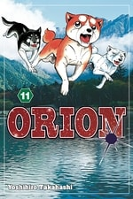 Orion #11