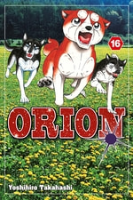Orion #16