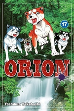 Orion #17