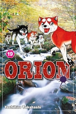 Orion #19
