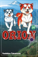 Orion #25