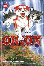 Orion #26
