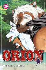 Orion #29