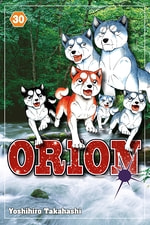 Orion #30