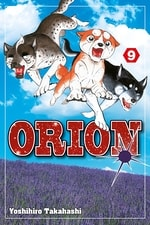 Orion #9